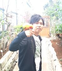 20111128インコ.jpg
