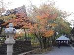 20111128修善寺紅葉.JPG