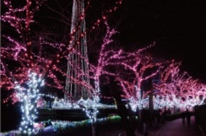 20111210_東武動物公園.jpg