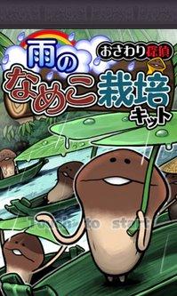 2013.2.9鈴木ブログ 栽培キット (1).jpg