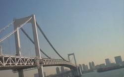 2013.3.16荻原ブログ レインボーブリッジ.JPG