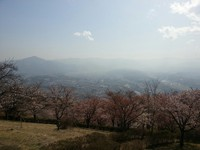 青山ブログ25.4.12④.jpg
