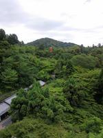 25.07.21内田ブログ清水寺からの眺望.jpg