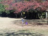 25.11.24伊藤ブログ3.jpg