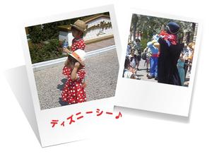 2014.8.25hoya1.jpg