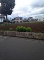 26.9.14itinosekiburogu.JPGのサムネイル画像