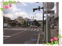 26.11.7suzukiblog2.JPG