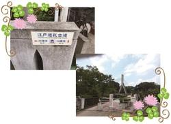 26.11.7suzukiblog5.jpg