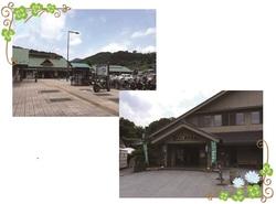 26.11.7suzukiblog6.jpg