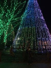 2014.12.20shiki-blog5.JPG