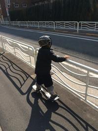 2015.2.14shiki-blog1.JPG