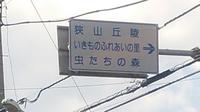 虫の森看板.JPG