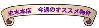 shiki-blog.onodera.jpg