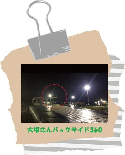 shiki-blog2015.5.23-360.jpg