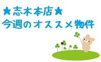 2015.08.01shiki-blog5.jpg