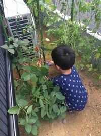 2015.8.15shiki-blog2.jpg