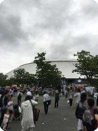 2016.0624hoya1.jpg