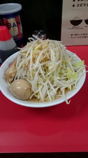 28.12.3shiki-blog3.jpg