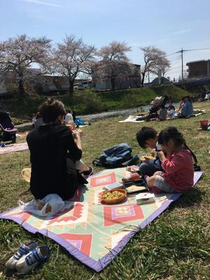 29.4.8shiki-blog3.jpg