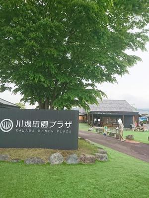 290625mizoguchi1.JPG