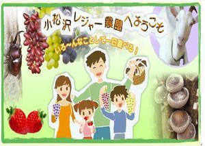 29.9.2shiki-blog小松沢レジャー農園 ロゴ.jpg