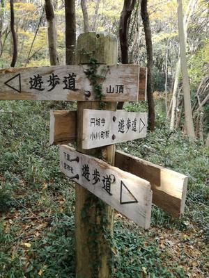 29.12.3shiki-blog分岐.jpg