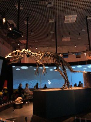 アロサウルス.JPG