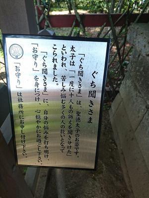 20180422溝口⑭_R.JPG