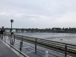 20180608大島11.jpg