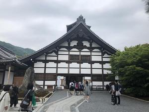 20180608大島3.jpg