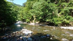 20180702岩沢川.JPG