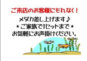 20180715鈴木⑦.jpg
