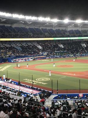 19.4.28shiki-blogIMG_6814.jpg