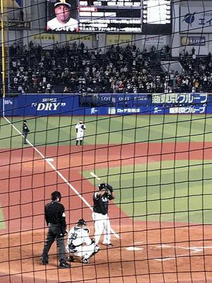 19.4.28shiki-blogIMG_6832.jpg