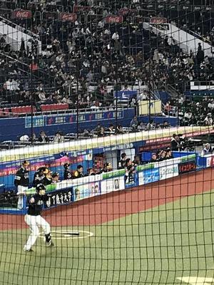 19.4.28shiki-blogIMG_6834.jpg