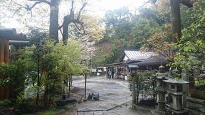 20190502komura写真4.jpg