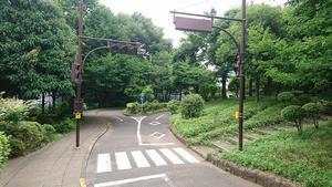 20190711小村6.jpg