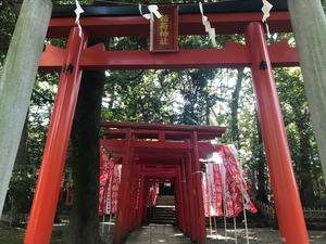 20190930渡部稲荷神社IN氷川神社_R.JPG